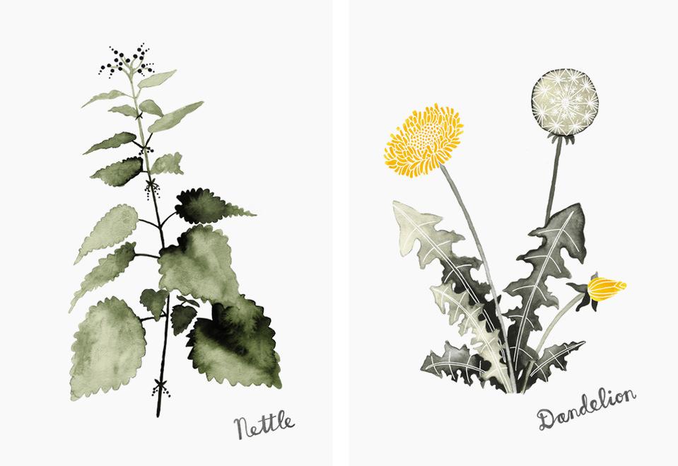 botanics3