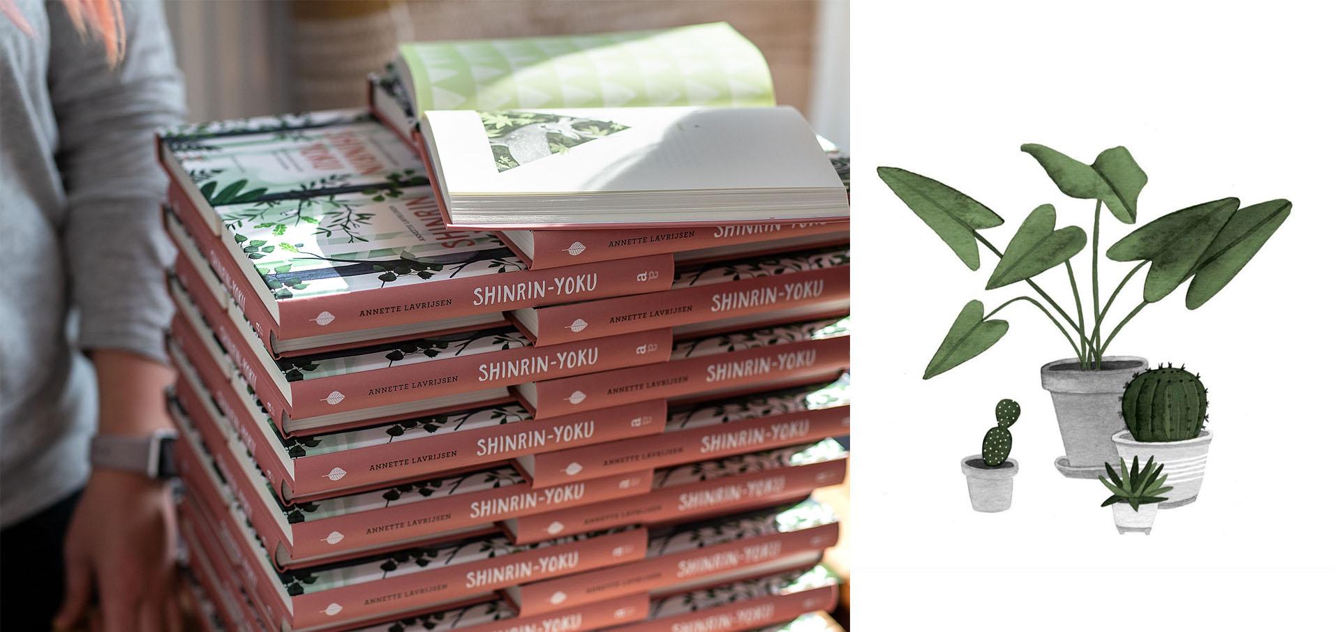 shinrinyoku houseplants