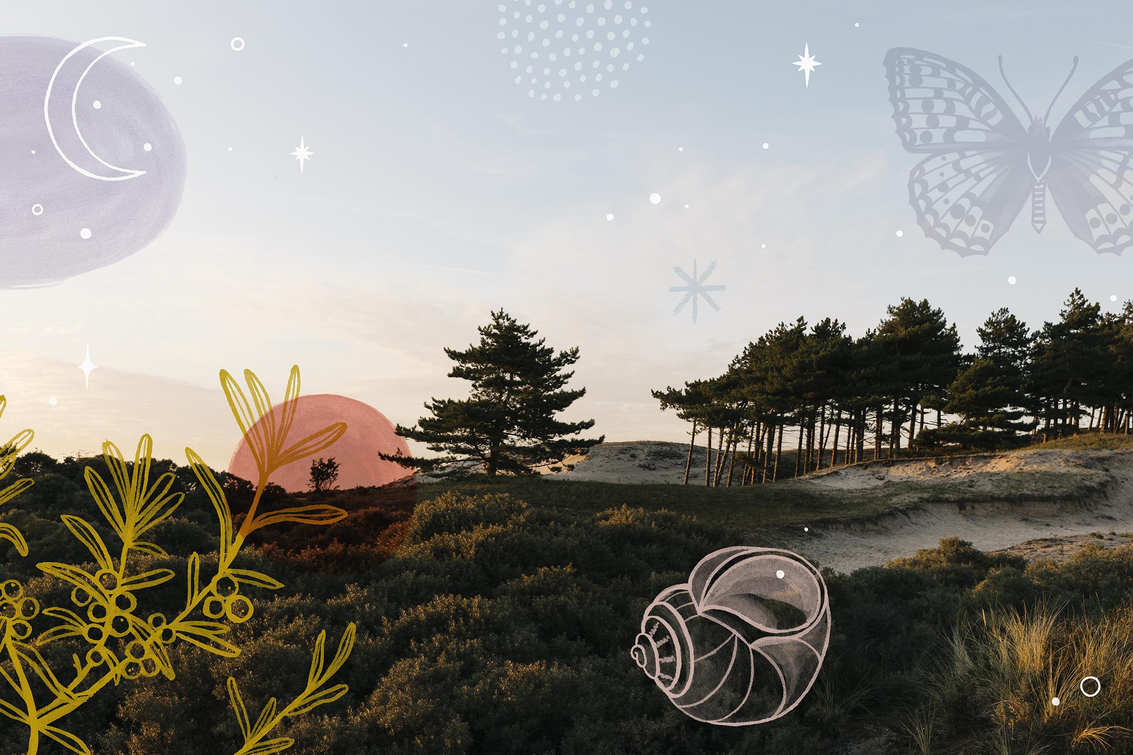 Adobe_Lewis_Landscape_Valesca_X_On_a_hazy_morning