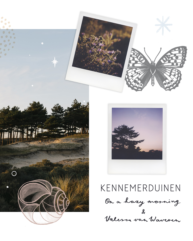 Adobe_Lewis_Landscape_Valesca_X_On_a_hazy_morning_detail2